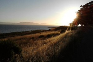 Summer Solstice Pinole Shores 2011 by Baylan Megino